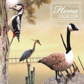 TLC Home Collection Logo_512x512_jpg